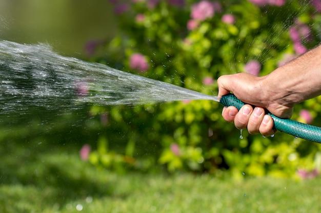 O homem segura uma mangueira de jardim na mão, rega as plantas, aperta a ponta da mangueira para uma melhor aspersão da água.