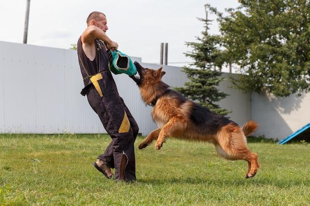 O instrutor de cães conduz a aula com o cão pastor alemão. o cão protege seu dono.
