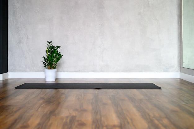 O interior da sala do estúdio para ioga, um tapete de borracha e uma planta de zamioculcas