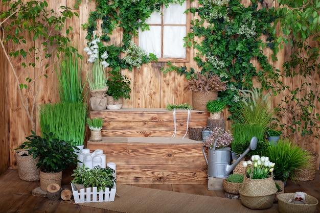 O interior do jardim primavera. pátio da primavera de uma casa de madeira com plantas verdes em vasos. casa de campo na varanda.