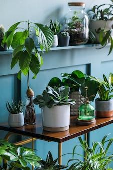 O interior elegante da sala de estar repleto de belas plantas, cactos em vasos de design diferente na prateleira retrô marrom. composição da selva do jardim doméstico. decoração moderna para casa. conceito floral ..