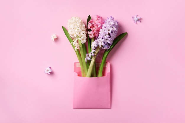 O jacinto da mola floresce no envelope postal cor-de-rosa sobre o fundo pastel perfumado.