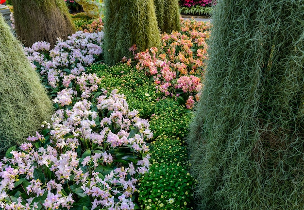 O jardim de flores