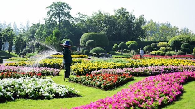 O jardineiro está regando as flores no parque em long 9 park. bangkok, tailândia