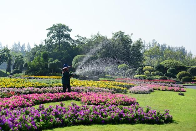 O jardineiro está regando as flores no parque em long 9 park.