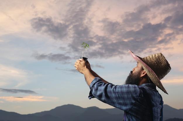 O jardineiro levanta o vaso da planta para o céu