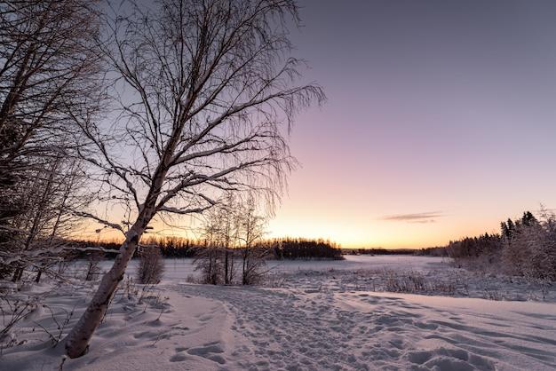 O lago e a floresta do gelo cobriram com as nevadas fortes e o céu azul agradável na estação do inverno na vila kuukiuru do feriado, finlandia.