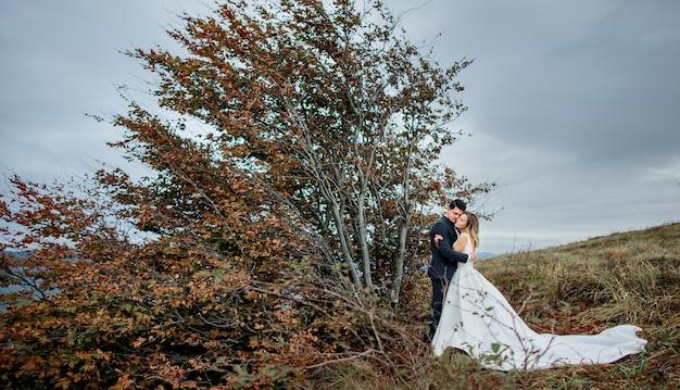 O lindo casal apaixonado, abraçando-se perto da árvore