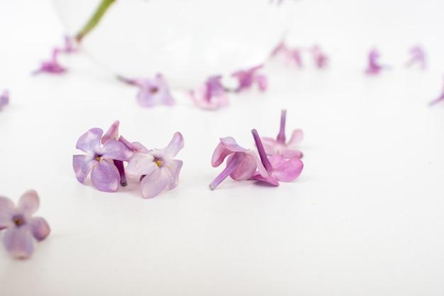 O lindo lilás em um fundo de madeira