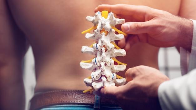 O médico demonstra os departamentos da hérnia de coluna vertebral e seus ferimentos
