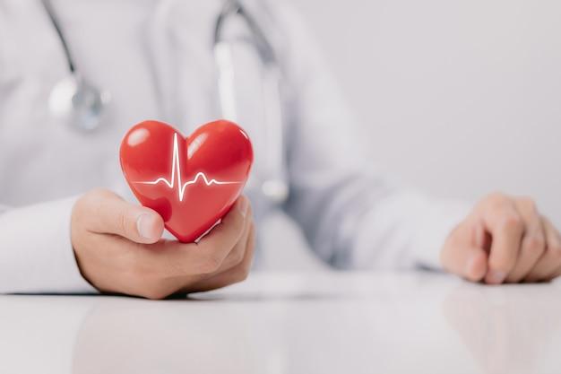 O médico está segurando e mostrando um coração vermelho com gráfico de vida em fundo branco.