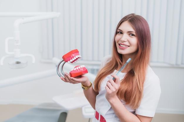 O médico ortodontista bonito mostra como cuidar de seus dentes