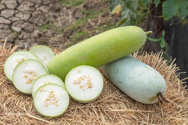 O melão de inverno é cortado em pedaços na palha.