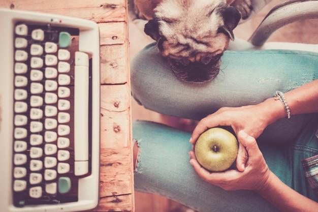 O melhor amigo, um velho simpático e lindo pug dormindo na perna de sua dona em casa, enquanto trabalhava com uma velha máquina de escrever