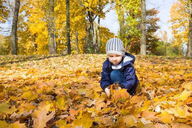 O menino caminha no parque na temporada de outono, pega e joga as folhas amarelas caídas