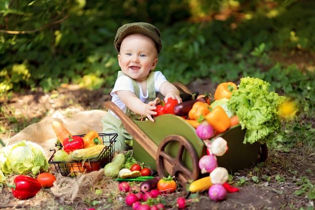 O menino cozinha uma salada de vegetais na natureza. jardineiro recolhe uma colheita de legumes. entrega de produtos