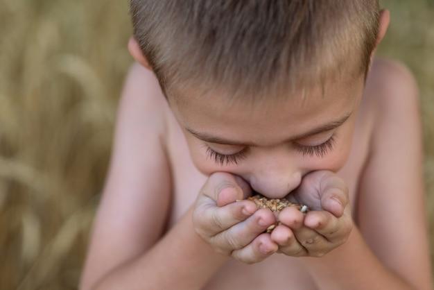 O menino do campo inala o aroma dos grãos de trigo. feche o retrato de uma criança em um campo de trigo. Foto Premium