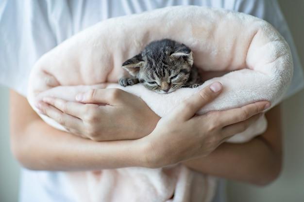 O menino está segurando um gatinho pequeno em seus braços, que dorme