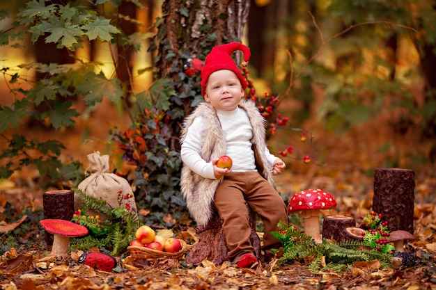 O menino gnomo feliz da floresta das fadas brinca e caminha na floresta, coleta e come maçãs deliciosas