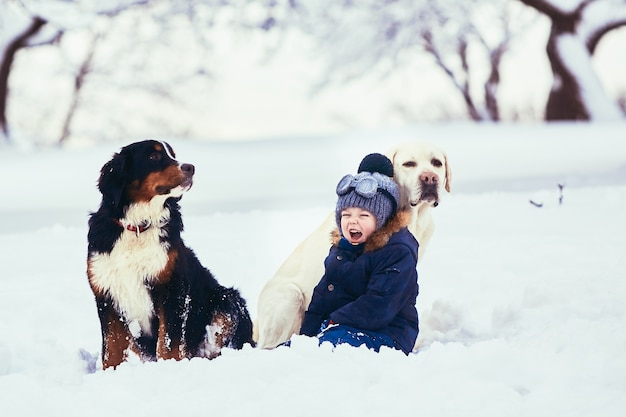 O menino pequeno e os cães sentados na neve