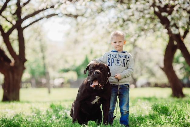 O menino simpático fica perto de cachorro no parque