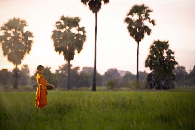 O monge iniciante está caminhando para a missão do templo todas as manhãs.