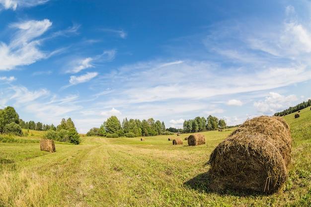 O monte de feno rola no campo com grama verde e o céu azul nublado. lente olho de peixe
