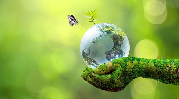 O mundo sendo segurado por uma mão de textura verde e uma borboleta com fundo bokeh verde borrado