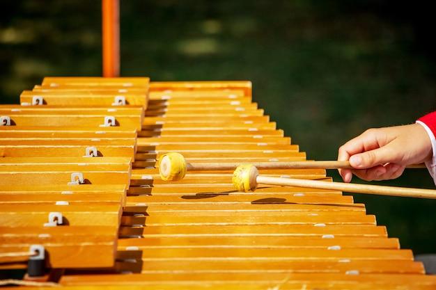 O músico toca no xilofone