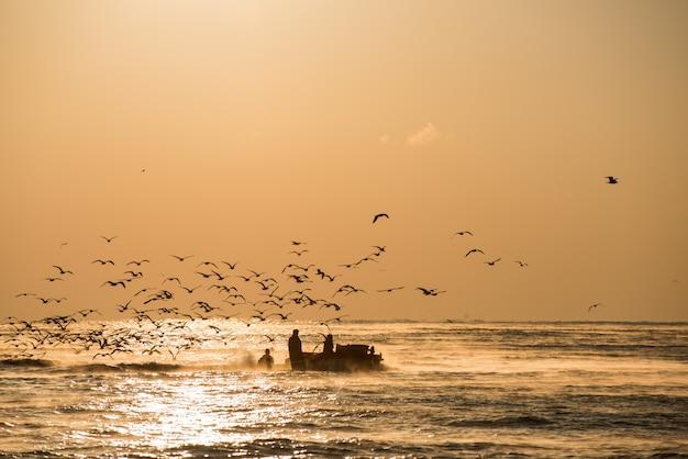 O navio com carga total de peixes e gaivotas no mar