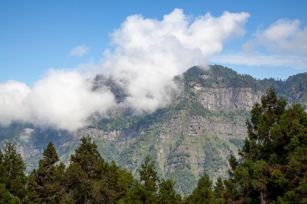 O nublado na montanha no parque nacional alishan em taiwan