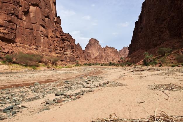 O oásis no desfiladeiro wadi disah al shaq, arábia saudita