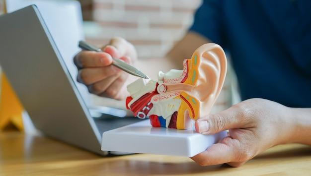 O otorrinolaringologista usa um ponto na anatomia do ouvido humano sobre o sintoma do tímpano