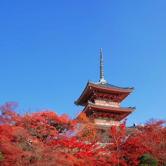 O pagode no templo de kiyomizu-dera com folhas vermelhas coloridas