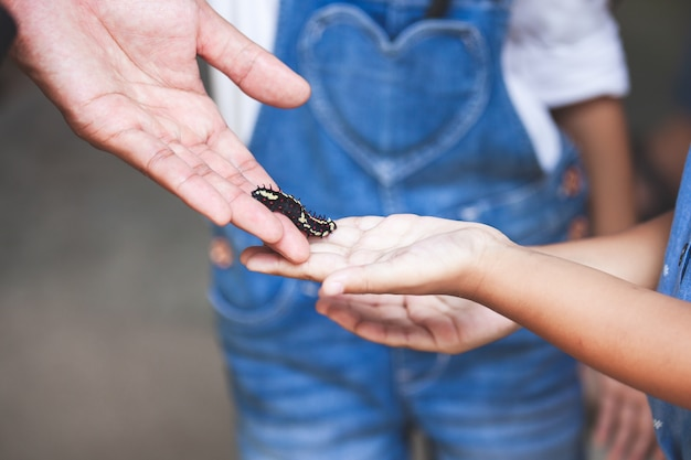 O pai dá uma lagarta preta a uma filha para tocar e aprender sobre a vida animal