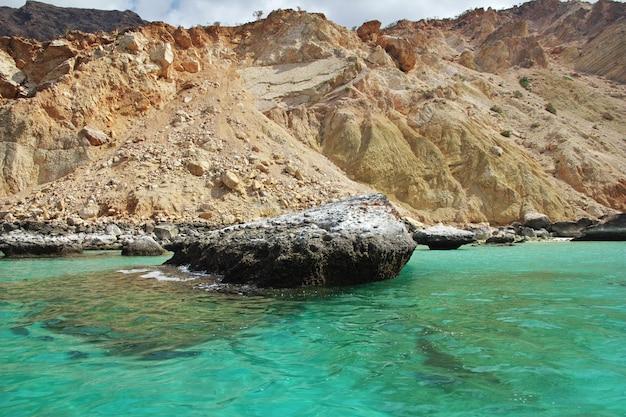O pássaro na baía de shuab, na ilha de socotorá, oceano índico, iêmen