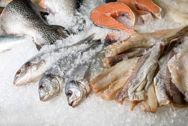 O peixe dorado no peixe define em um fundo de gelo