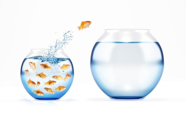 O peixe vermelho salta de um galheteiro cheio de peixes para um vazio e maior