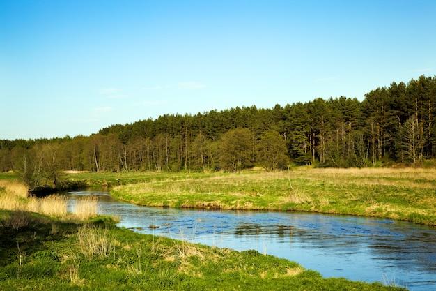 O pequeno rio no verão do ano. bielo-rússia