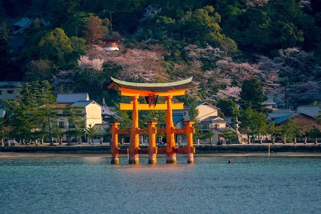 O portão flutuante do santuário de itsukushima com sakura em miyajima, hiroshima, japão