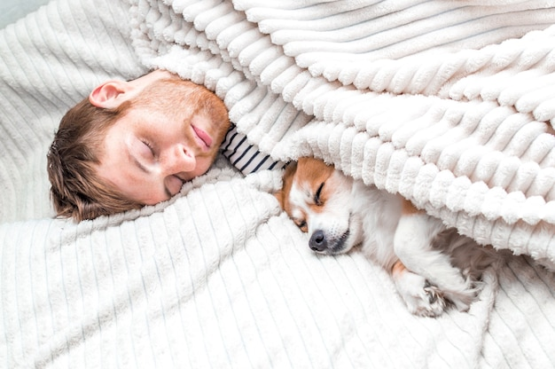 O proprietário dorme com seu cachorro na cama, debaixo de um cobertor. fundo branco. cão do conceito em casa. conceito de sono e descanso