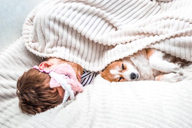 O proprietário está descansando com seu cachorro na cama, debaixo de um cobertor. fundo branco. manhã de conceito