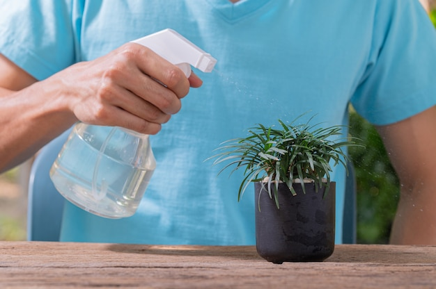 O pulverizador de água de plantas em vasos.