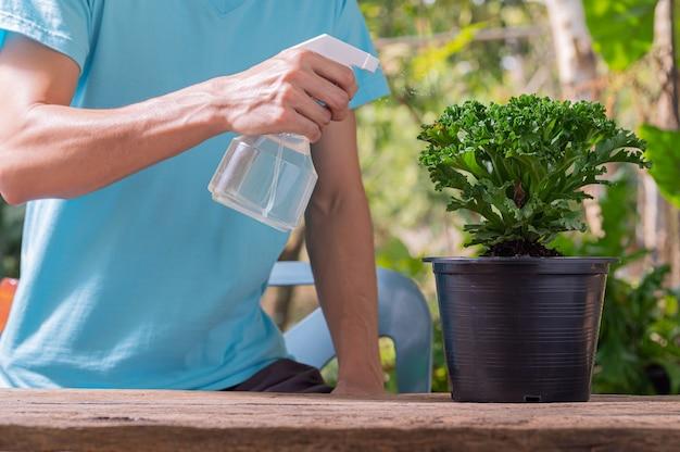 O pulverizador de água de plantas em vasos