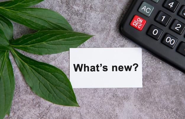 O que há de novo - texto em uma mesa de concreto cinza com uma calculadora e folhas verdes