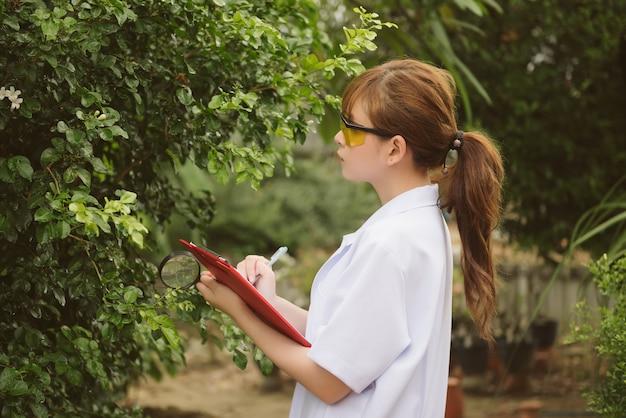 O retrato da planta de exame do engenheiro asiático da mulher da biotecnologia, um especialista de planta a, em um jaleco branco faz uma análise de teste.