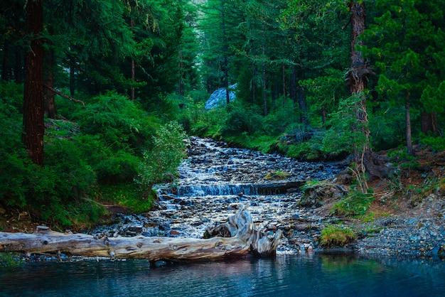O riacho da montanha flui no lago no tempo escuro
