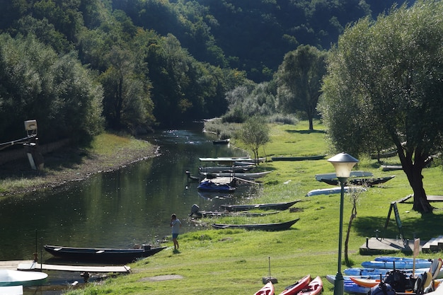 O rio corre e prados verdes nas margens Foto Premium