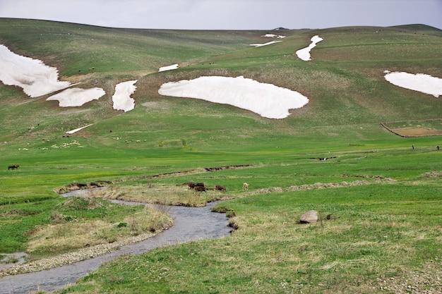 O rio nas montanhas do cáucaso, armênia