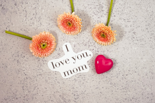 O rosa bonito da mola floresce na tabela pastel azul em um vaso. borda floral. dia das mães